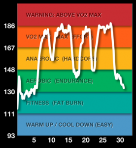 See right in the middle where my heart rate dips into the green zone? That was rower.  Busted.